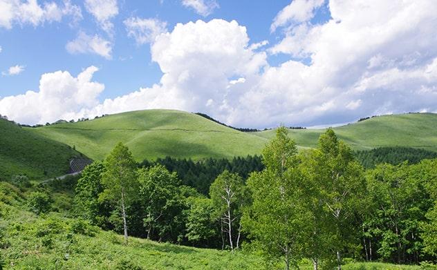 長野県の自然