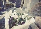 お墓に添えられたきれいなお花